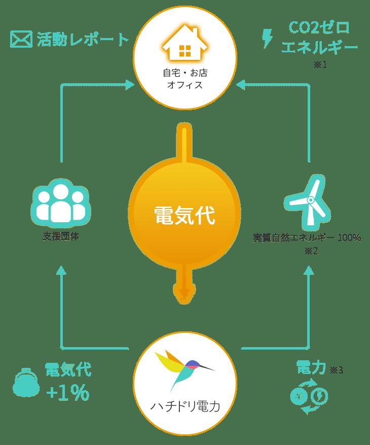 ハチドリ電力の仕組み